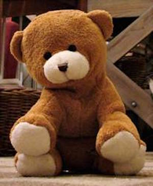 Foster Care Sexual Abuse